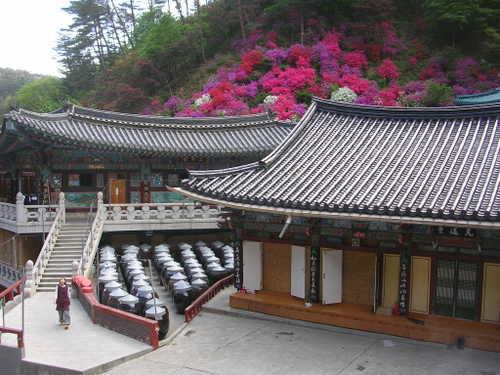 韓国 救仁寺①